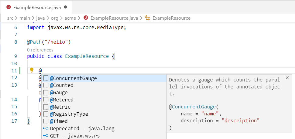 MicroProfile Metrics Java snippets support